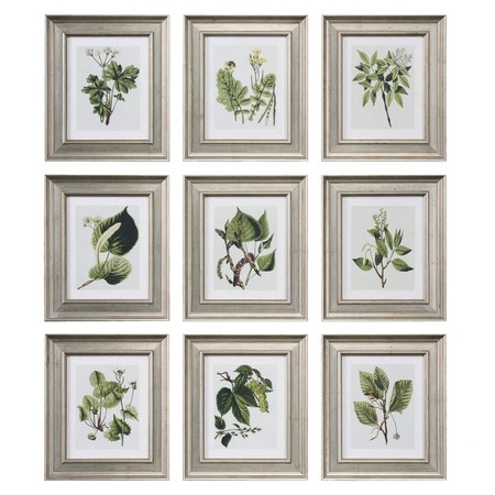 I Pinned This 9 Piece Leaf Botanical Study Wall Art Set From The Throughout Framed Botanical Art Prints (Image 8 of 15)