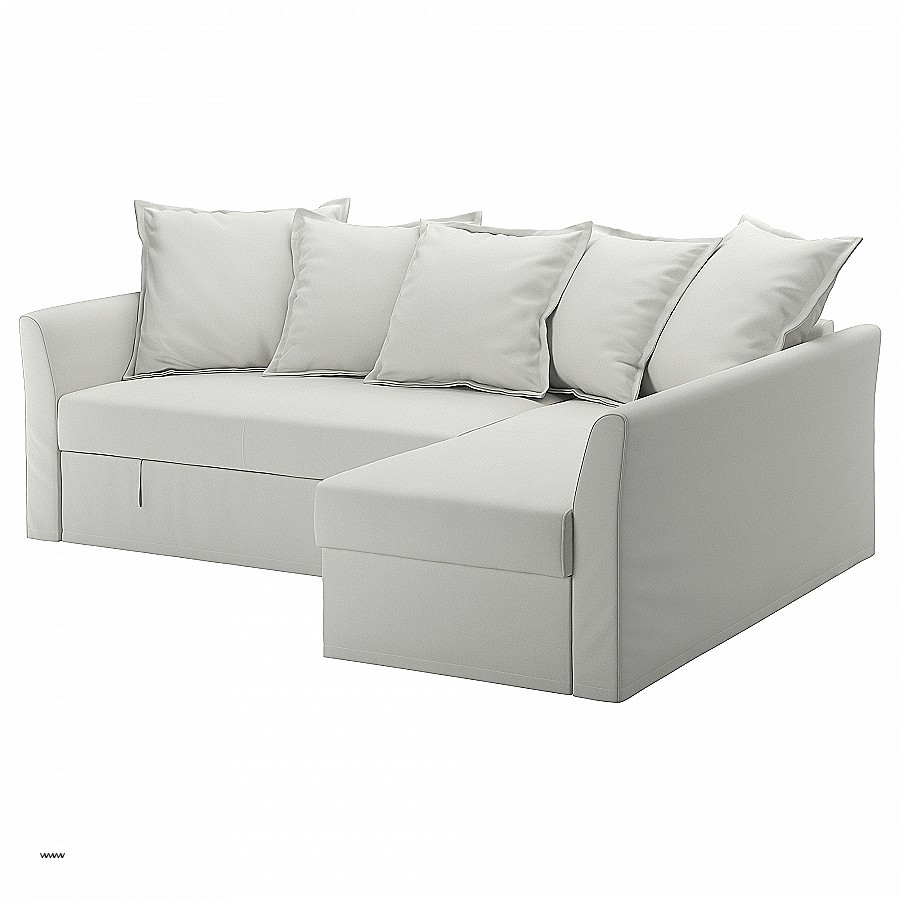King Size Sleeper Sofas Inspirational Sleeper Sofas & Chair Beds Pertaining To King Size Sleeper Sofas (View 10 of 10)