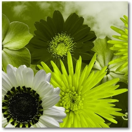 Lime Green Flowers On Canvas. Modern Digital Canvas Prints (Image 9 of 15)