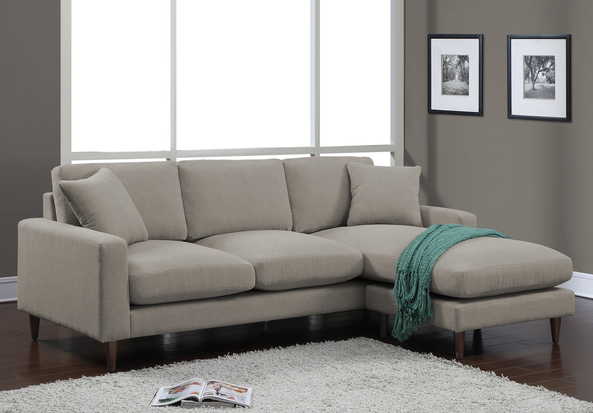 Lovable Sleeper Sofa With Chaise Lounge Alluring Living Room Within Target Sectional Sofas (Image 8 of 10)
