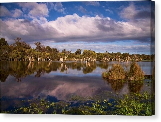 Mandurah Canvas Prints | Fine Art America With Mandurah Canvas Wall Art (View 5 of 15)