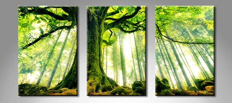 Nature Canvas Wall Art | Himalayantrexplorers With Nature Canvas Wall Art (View 8 of 15)