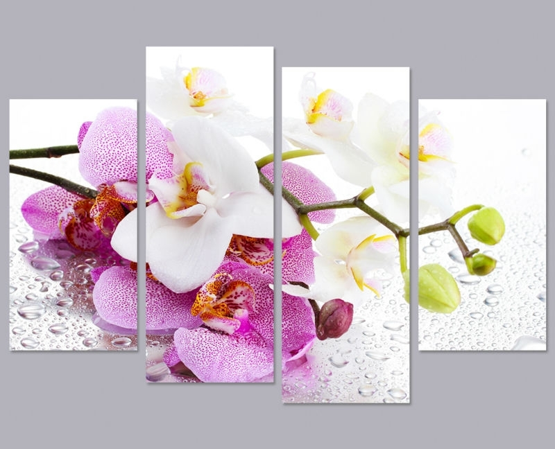 Orchid Wall Decor Image Collections – Wall Design Ideas Regarding Orchid Canvas Wall Art (View 2 of 15)