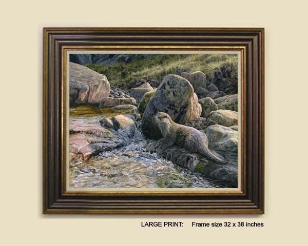 Otter Prints – Canvas Print Of An Otter In Evening Light For European Framed Art Prints (View 5 of 15)