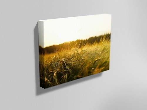 Personalised Canvas Printing | Nottingham – Instaprint Throughout Nottingham Canvas Wall Art (View 6 of 15)