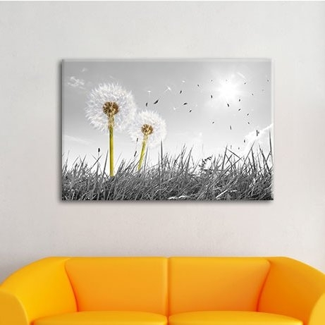 Pixxprint Dandelions In A Meadow Wall Art On Canvas & Reviews With Dandelion Canvas Wall Art (View 14 of 15)