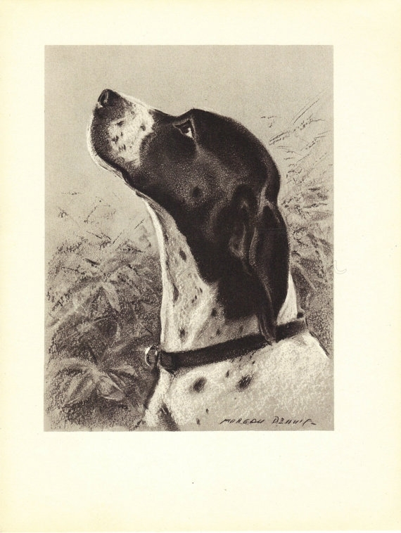 Pointer 1940S Vintage Dog Print, Morgan Dennis, Wall Decor, Art For Dog Art Framed Prints (Image 12 of 15)