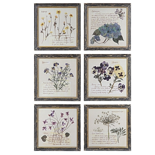 Pressed Flower Wall Prints From Creative Co Op In Flowers Framed Art Prints (Image 9 of 15)