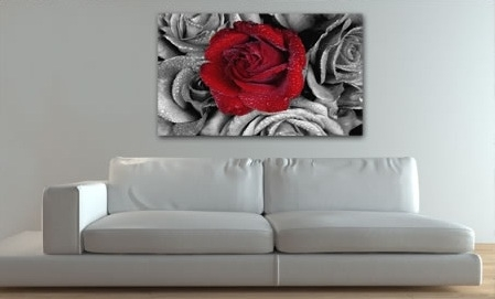Red Rose B/w | Hundreds Of Floral Canvas Prints At Canvas Ar… | Flickr In Roses Canvas Wall Art (Image 8 of 15)