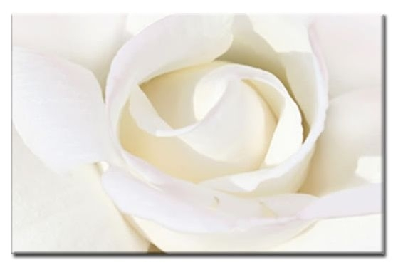 Rose Canvas Wall Art 30X20 A1 76X52Cm Regarding Roses Canvas Wall Art (View 7 of 15)