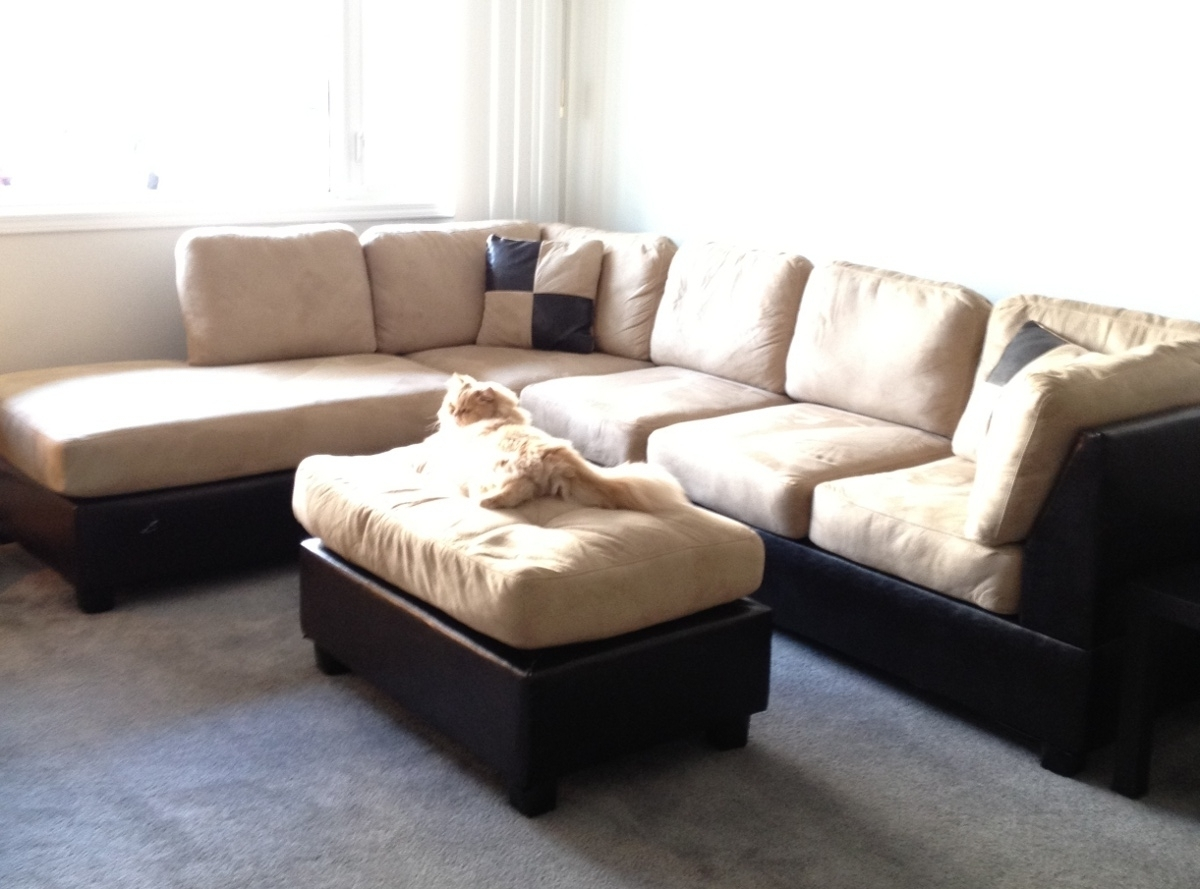 Featured Photo of Sacramento Sectional Sofas
