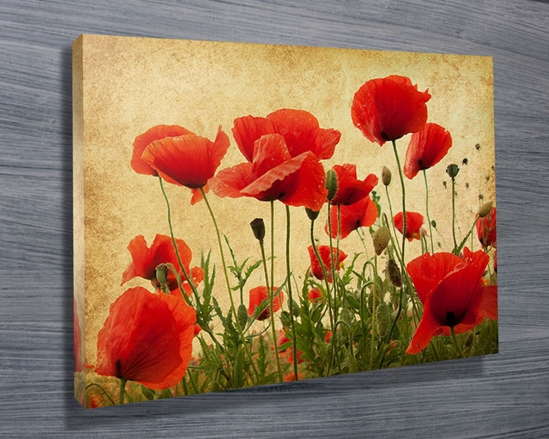 Stunning Poppies Wall Art Photos – Wall Art Design For Poppies Canvas Wall Art (Image 12 of 15)