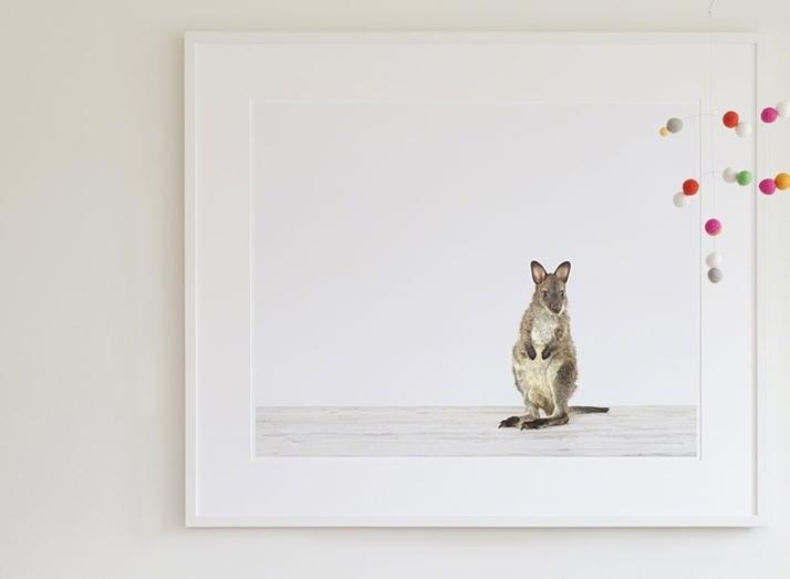 The Animal Print Shop | Sharon Montrose | Online Animal Art Regarding Framed Animal Art Prints (Image 14 of 15)