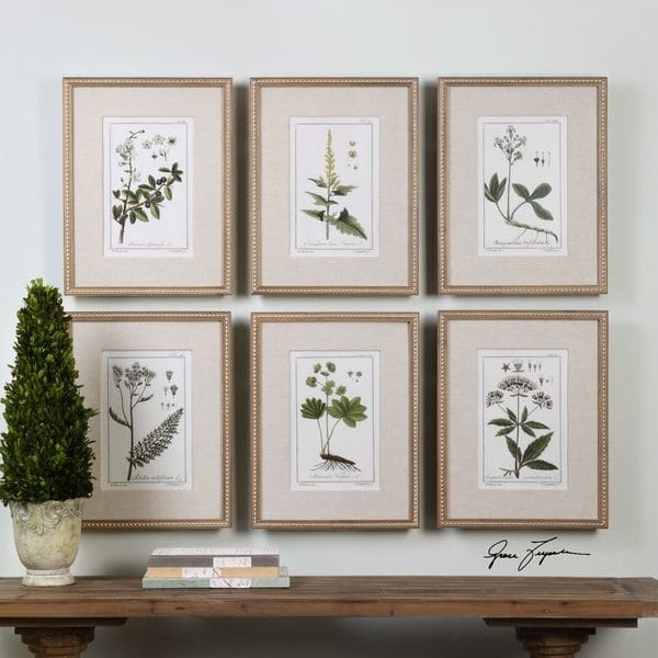Uttermost Green Floral Botanical Study Prints (Set Of 6) – Free Intended For Framed Botanical Art Prints (Image 14 of 15)