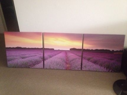 Wall Art Canvas Print In Queensland | Gumtree Australia Free Local With Regard To Queensland Canvas Wall Art (View 9 of 15)