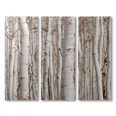 Wall Art Designs: Beautiful Birch Tree Wall Art, Birch Tree Wall With Regard To Birch Trees Canvas Wall Art (Image 13 of 15)