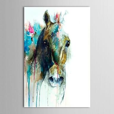 Wall Art Designs: Cheap Framed Wall Art Animal Abstract Horse Head In Abstract Horse Wall Art (View 13 of 15)