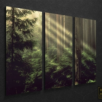 Wall Art Designs: Nature Wall Art Forest Framed Nature Photo Large Intended For Nature Canvas Wall Art (View 10 of 15)