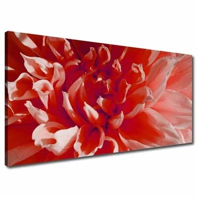 Wall Art: Lastest Ideas Flower Wall Art Canvas Red Flower Canvas With Regard To Red Flowers Canvas Wall Art (View 4 of 15)