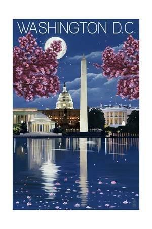 Washington D.c (Image 11 of 15)