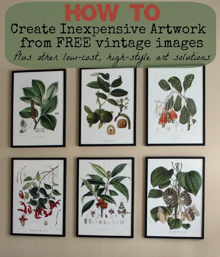 Where To Find Inexpensive Antique Botanical Prints Throughout Framed Botanical Art Prints (Image 15 of 15)