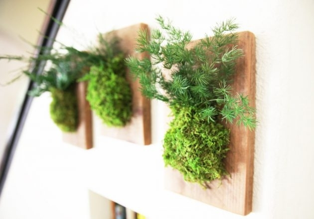 15 Spectacular Moss Wall Art Designs That Redefine The Living Wall Regarding Living Wall Art (View 13 of 25)