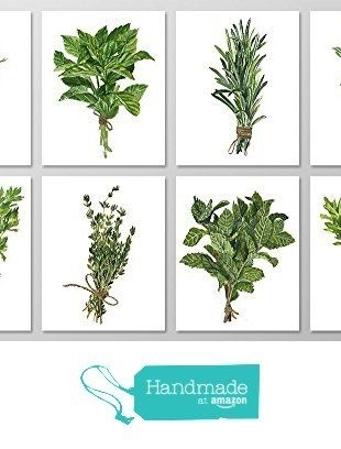 8 8X10 $34 Herb Wall Art #a076 - Set Of 8 Botanical Art Prints (8X10 inside Herb Wall Art
