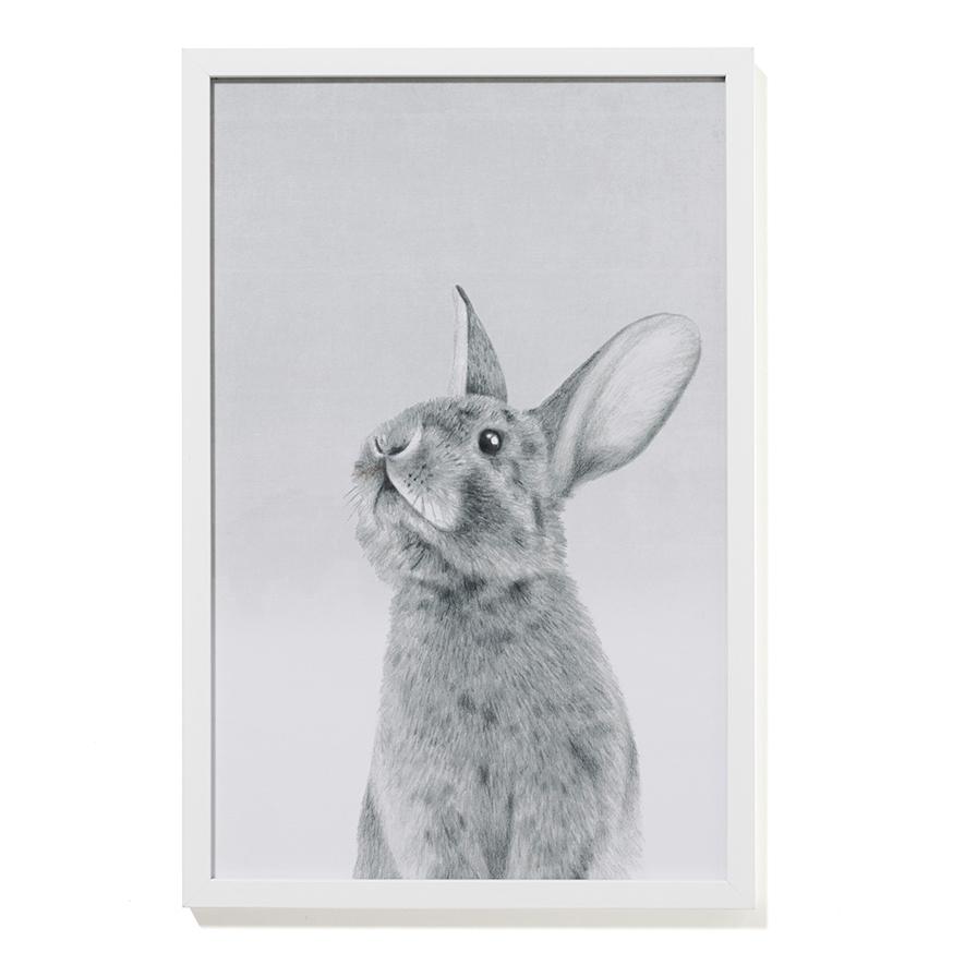 Adairs Kids – Bunny Wall Art – Home & Gifts Wall Art – Adairs Kids In Bunny Wall Art (View 20 of 20)