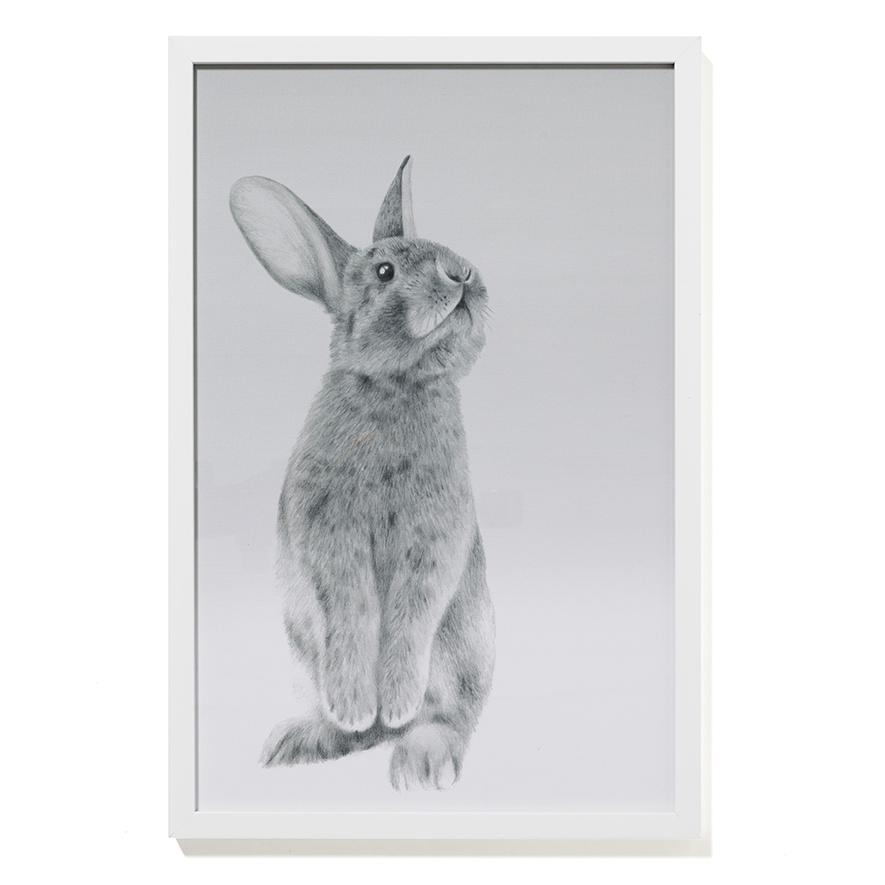 Adairs Kids – Standing Bunny Wall Art – Home & Gifts Wall Art Inside Bunny Wall Art (View 6 of 20)