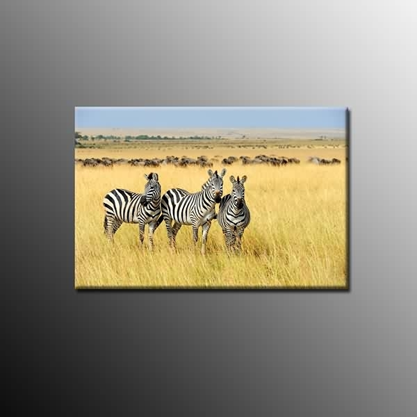 Animal Canvas Prints Wall Art Zebra Canvas Painting For Room Home With Zebra Canvas Wall Art (View 14 of 25)