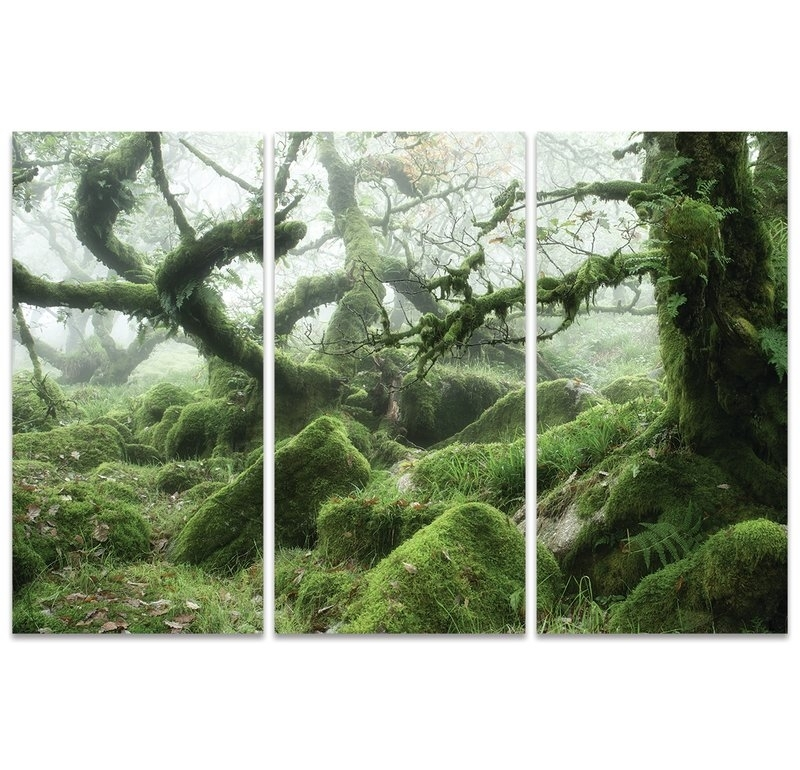 Art Group Wistman's Wood, Dartmoor' Wall Art Multi Piece Image On With Regard To Multi Piece Wall Art (View 19 of 20)