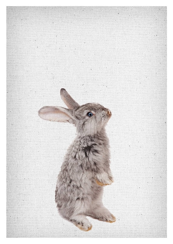 Bright Design Bunny Wall Art Modern Decoration Rabbit Print Decor For Bunny Wall Art (Image 3 of 20)