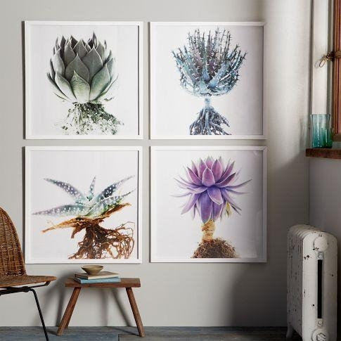 Clinton Friedman Colored Succulent Wall Art With Regard To Succulent Wall Art (Image 3 of 25)