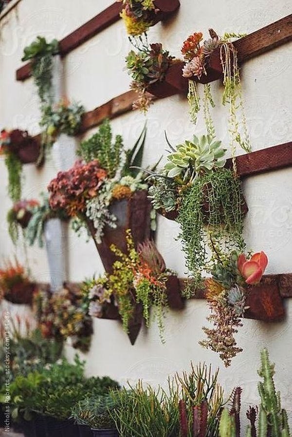 Cool 21 Amazing Succulent Wall Art To Be Hang On The Wall Https With Regard To Succulent Wall Art (Image 5 of 25)