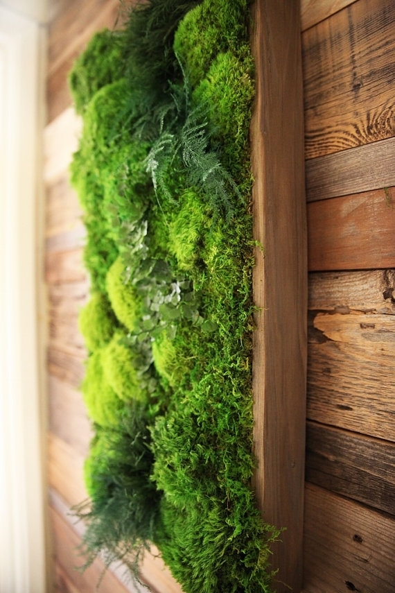 Eco Friendly Botanical Wall Art Brings The Self Sustaining Beauty Of In Living Wall Art (Image 6 of 25)
