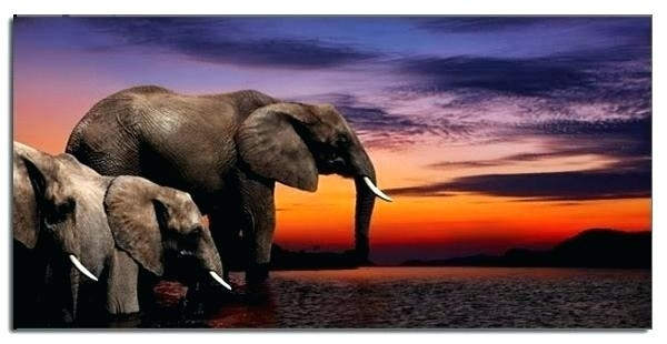 Elephant Canvas Wall Art The Elephant Canvas Print Canvas Wall Art For Elephant Canvas Wall Art (View 19 of 20)