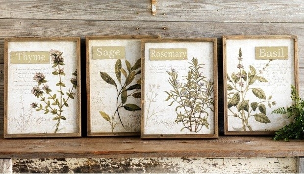 Framed Herb Wall Art, Set Of 4 | Antique Farmhouse Inside Herb Wall Art (Image 4 of 20)