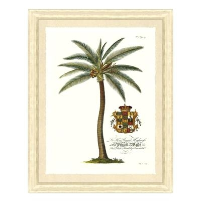 Framed Palm Tree Wall Art Buy Palm Tree Wall Art Decor From Bed Bath Throughout Palm Tree Wall Art (Image 2 of 25)