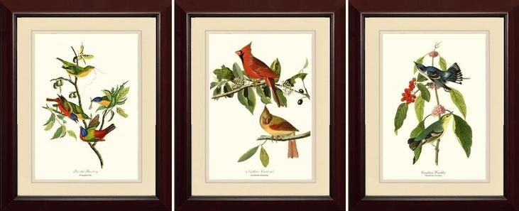 Framed Print Sets Image Of Grey Bloom Canvas Wall Art Framed Pertaining To Bird Framed Canvas Wall Art (Image 15 of 25)
