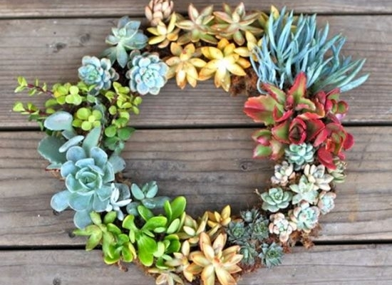 Garden Trend We Love! Make Living Wall Art With Succulents – Organic Inside Succulent Wall Art (Image 10 of 25)