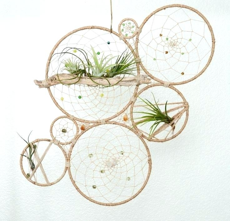 Geometric Plant Holder Wall Art Round Air Plant Holder Natural Wall Regarding Bohemian Wall Art (View 20 of 25)