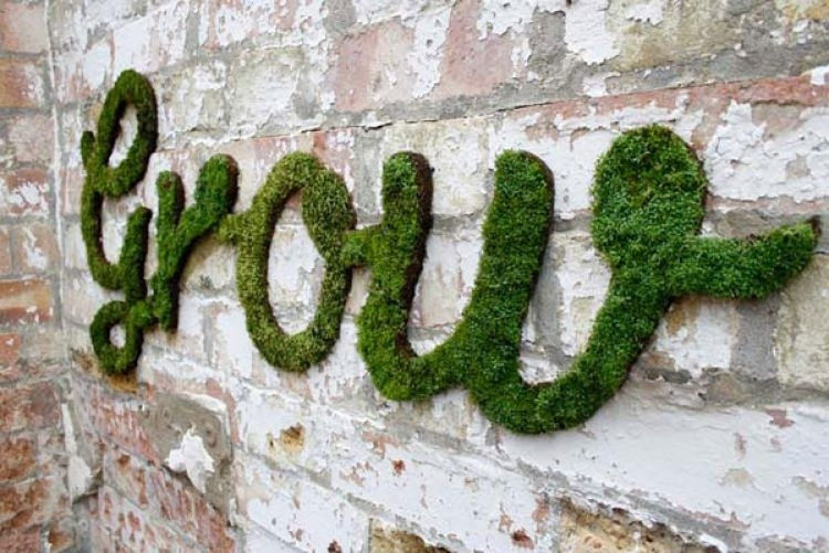 How To Make Moss Wall Art | Houseandhome (Image 11 of 25)