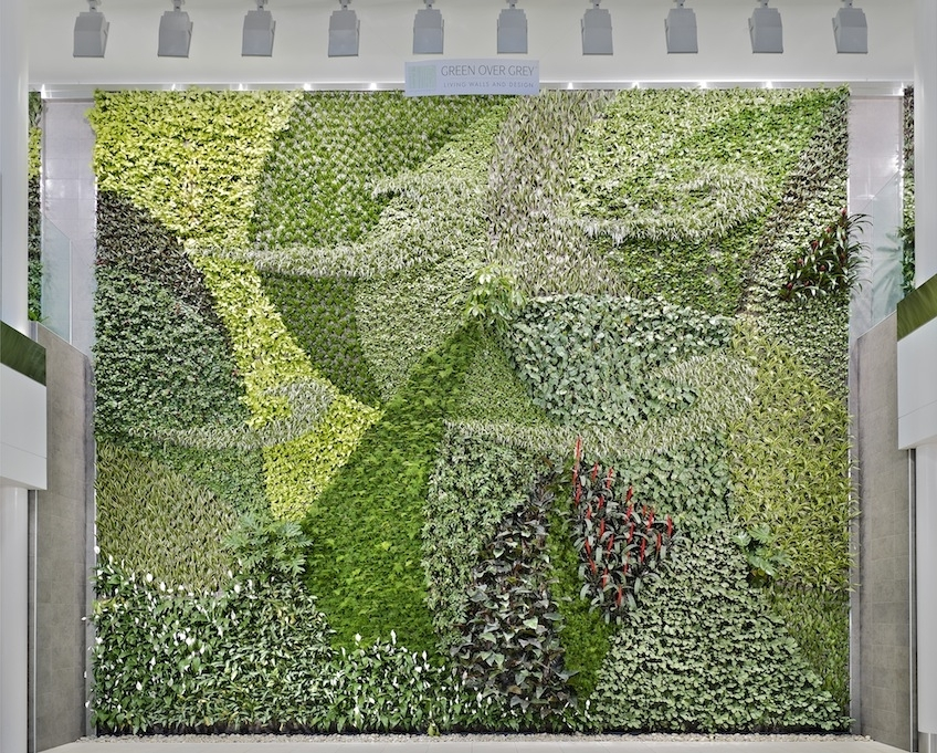 Innovative Vertical Gardens Inside Living Wall Art (View 19 of 25)