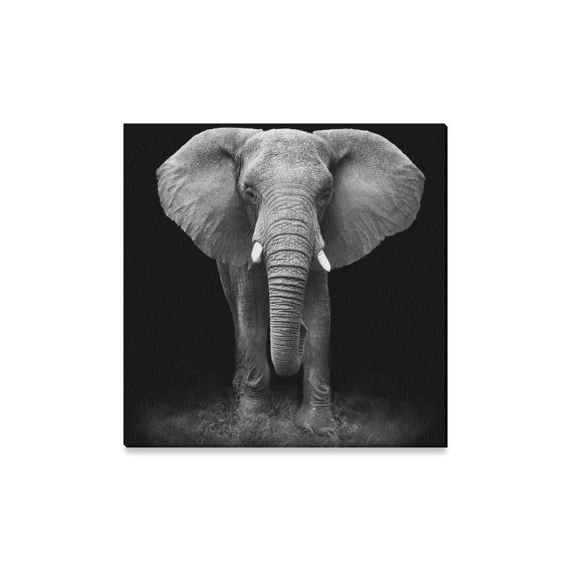 Featured Photo of Elephant Canvas Wall Art