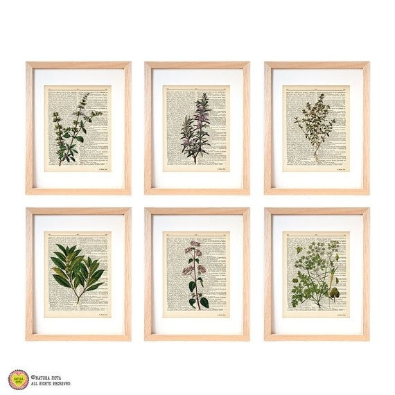 Featured Image of Herb Wall Art