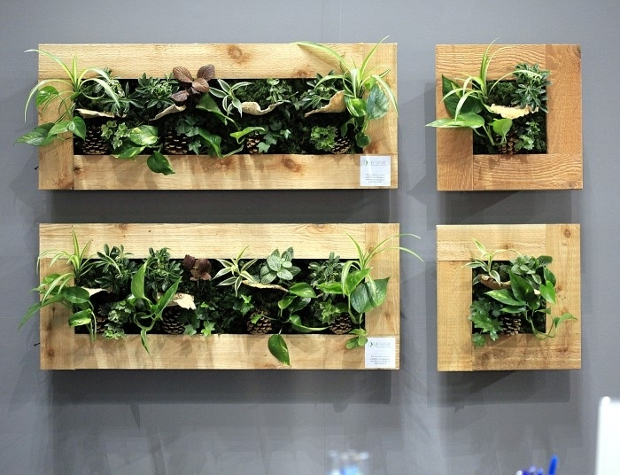 Liven Up Your Home With Indoor Vertical Wall Planters – Garden Therapy For Living Wall Art (Image 13 of 25)