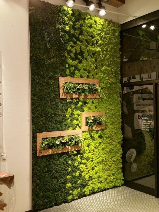 Moss Is New Paint: How To Create Art With Moss | Spaces | Pinterest In Living Wall Art (Image 19 of 25)