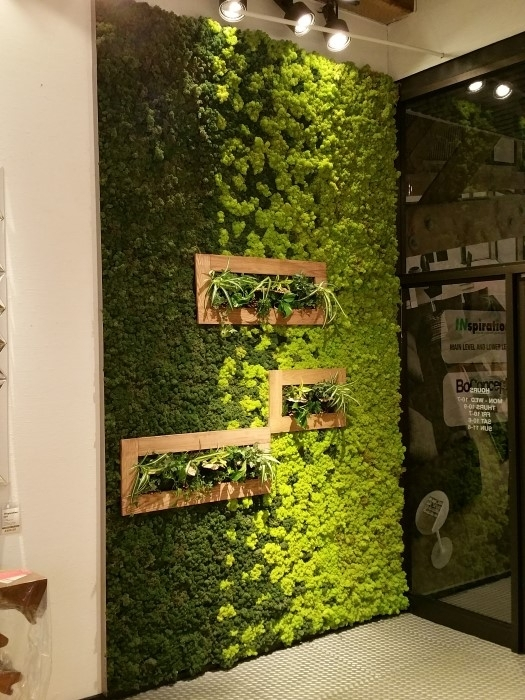 Moss Is New Paint: How To Create Art With Moss Within Moss Wall Art (Image 12 of 25)