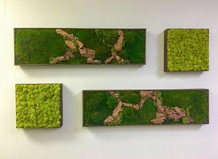 Moss Wall Art 36X18 With Driftwood Wabimoss, Moss Wall Art Within Moss Wall Art (View 5 of 25)