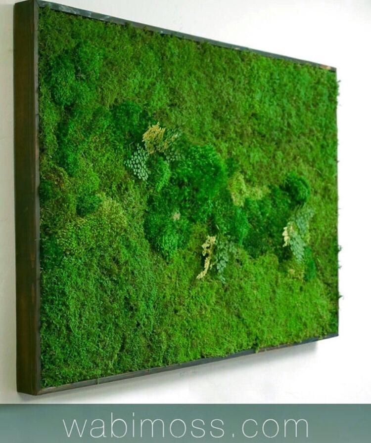 Moss Wall Art 54X36 – Wabimoss With Moss Wall Art (View 6 of 25)